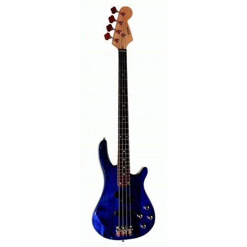 Bosinė gitara